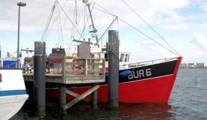 """Fischkutter """"Tümmler"""" im Hafen Burgstaaken"""