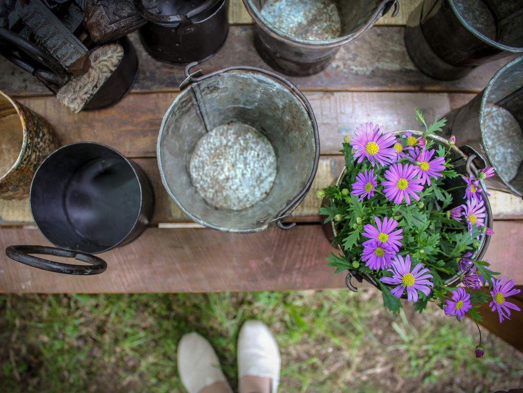Zinktöpfe, andere Behältnisse und ein Gänseblümchen